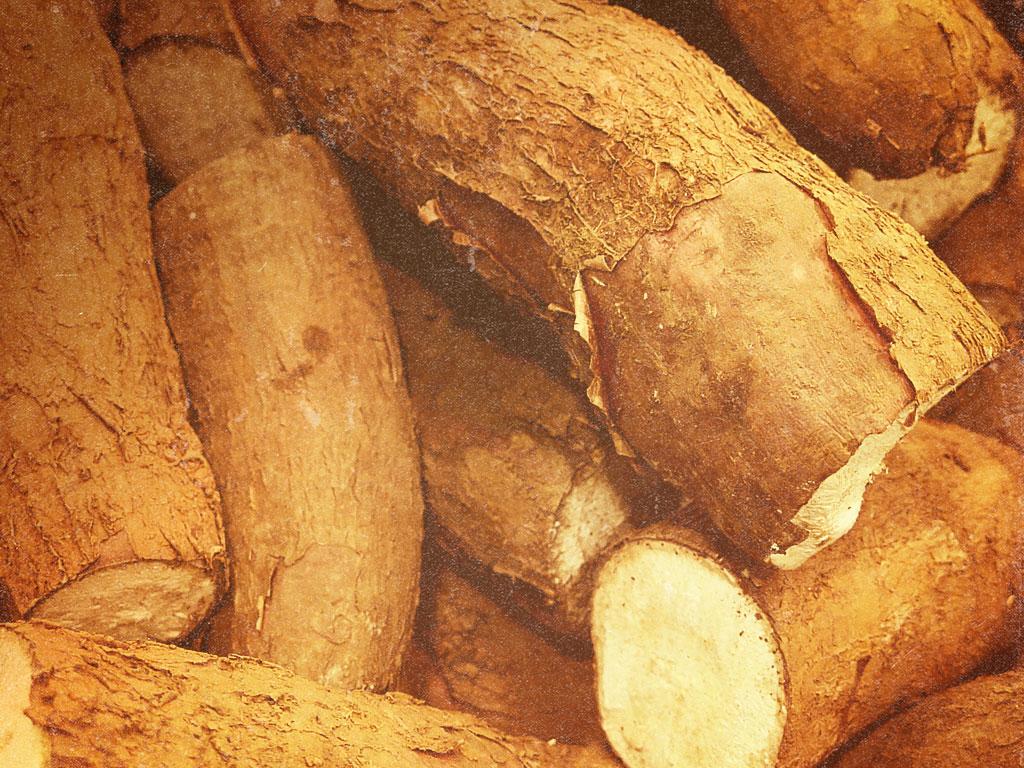 cassave pie